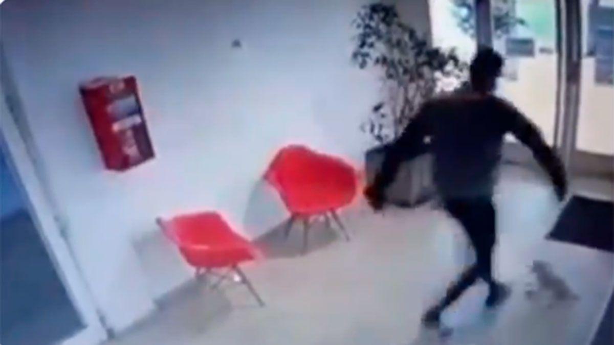 Un árbitro fue filmado pateando una perrita y lo escracharon