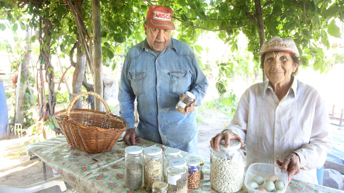 La Casa de Semillas es una realidad. Los hermanos Carmen y José Ramírez muestran algunas de las variedades de semillas que sacan de su plantación en San Carlos.