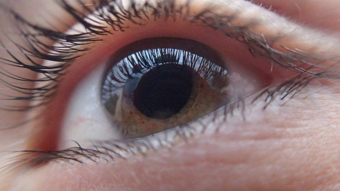 Implantes de retina prometen dar una visión artificial a los ciegos