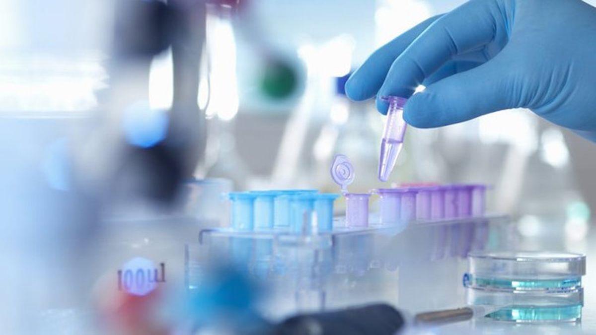 Científicos argentinos lograron determinar por qué el virus logró evadir la respuesta inmune innata de los seres humanos