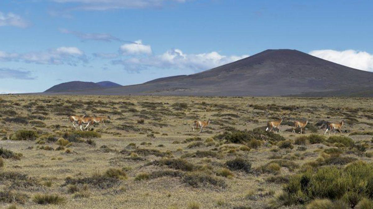 Habilitan más áreas naturales para visitar en Mendoza
