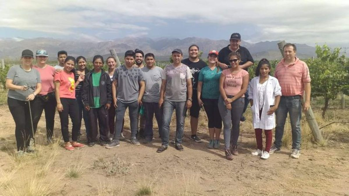 Los alumnos de Don Bosco y los profesores posan luego de la cosecha de las uvas sauvignon blanc que les donaron en una finca de San Carlos