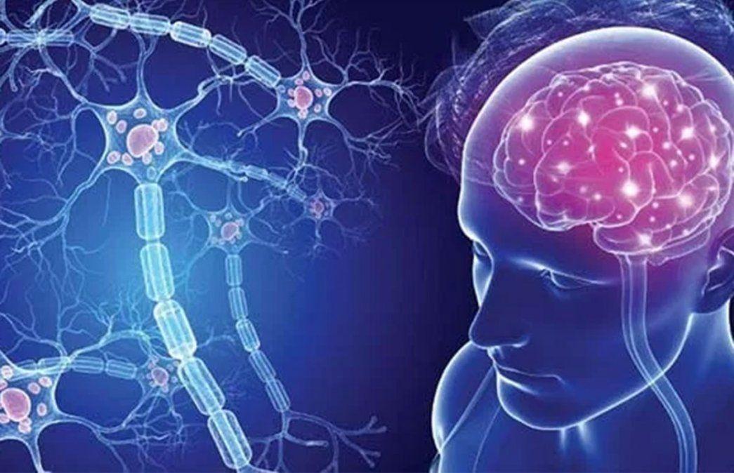 Se estima que 2.300.000 personas sufren en el mundo esclerosis múltiple y que en la Argentina afecta a entre 9 mil y 12 mil pacientes.