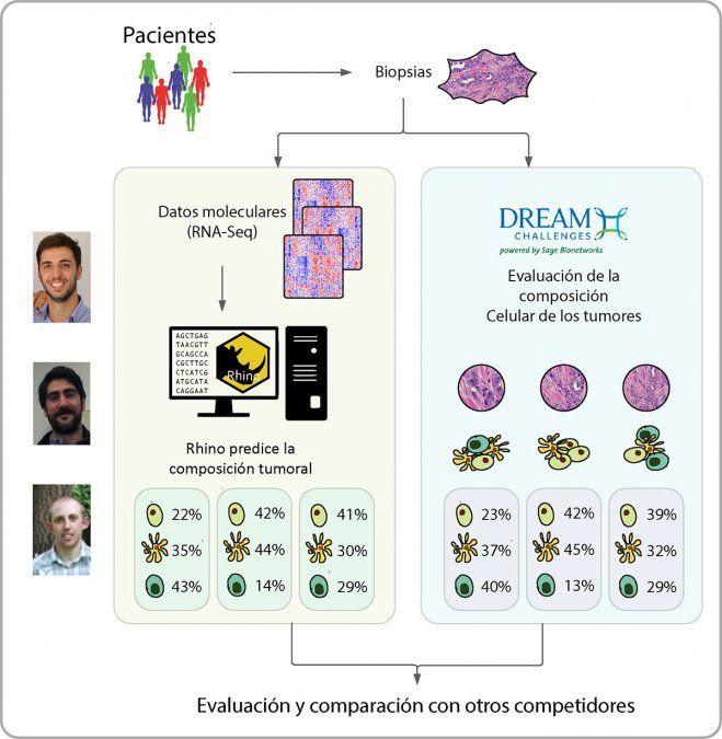 Investigadores de UNCuyo y Harvard, premiados por un modelo bioinformático