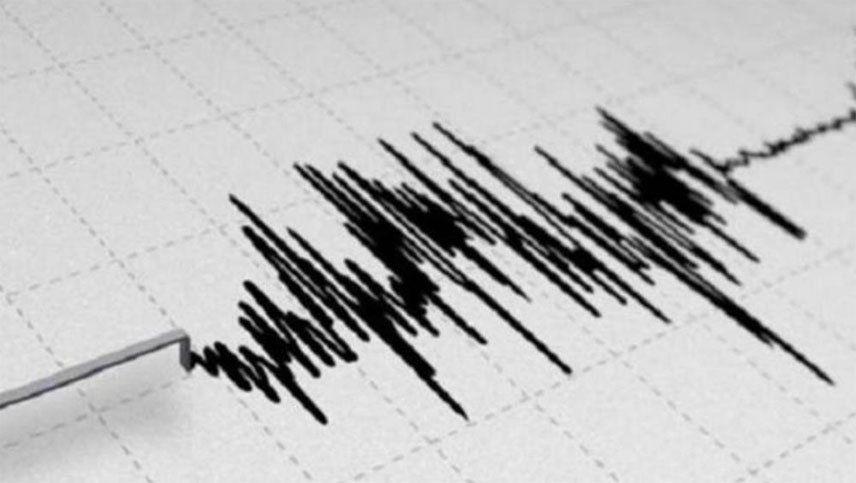 Fuerte temblor en Chile se sintió en Mendoza