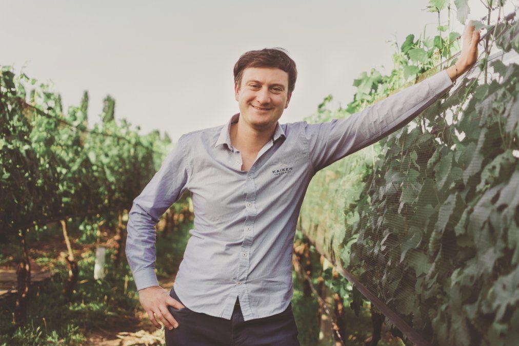 Los ingenieros agrónomos: del viñedo a la bodega
