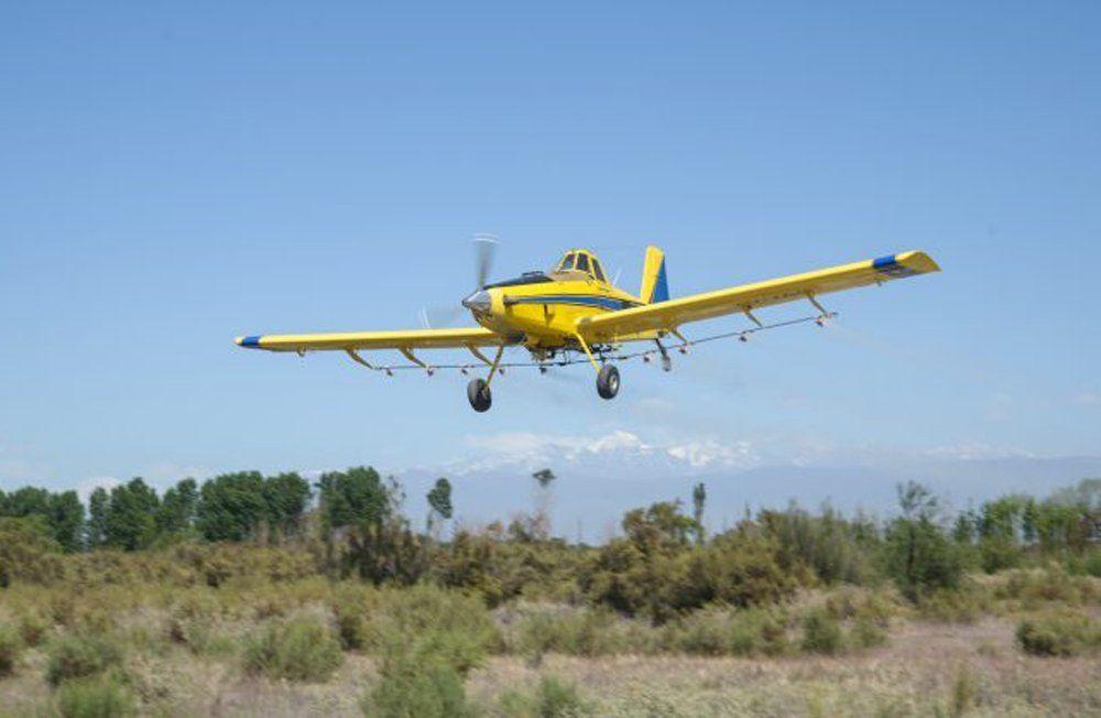 En Mendoza se inició la campaña contra la polilla de la vid. Los aviones fumigarán 42.000 hectáreas