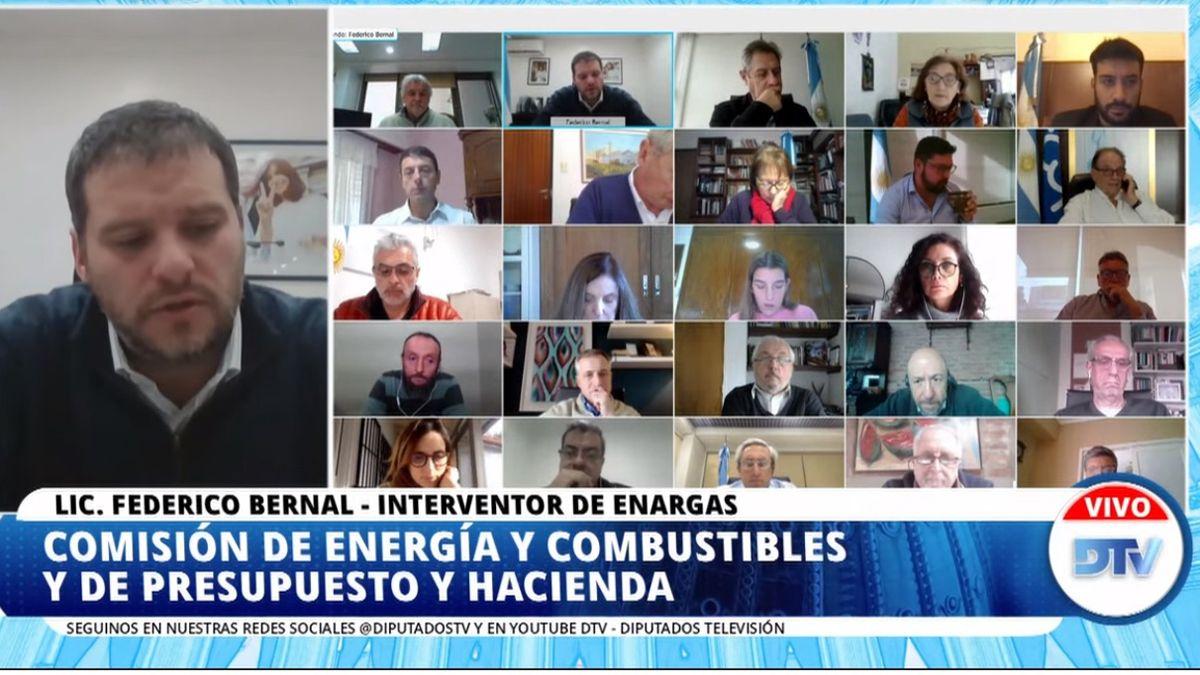 Videoconferencia del interventor del Enargas