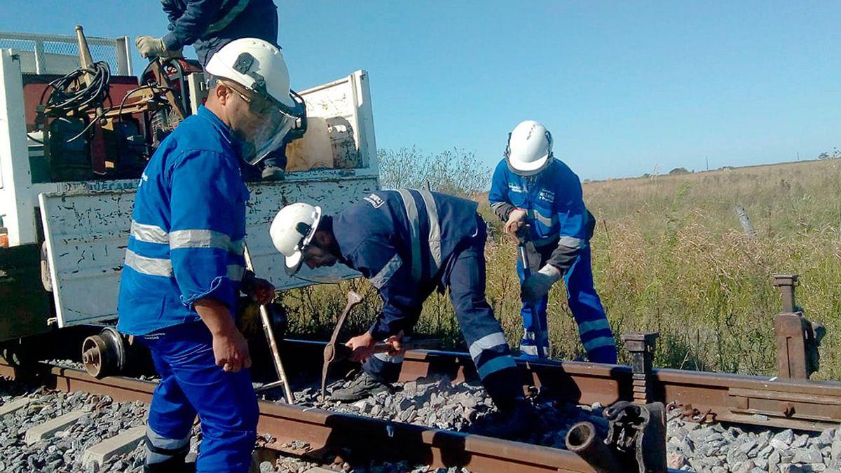 Reactivan obras ferroviarias. El Belgrano Cargas opera en varias provincias del país.