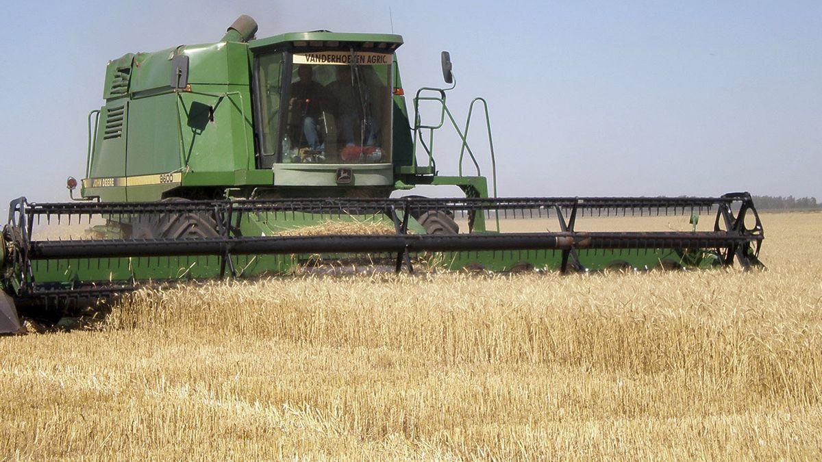 El Campo anunció un paro en la comercialización de todos los granos desde el lunes 11 de enero hasta las 24h del miércoles 13 de enero.