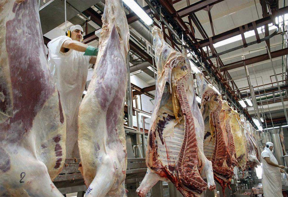 El plan que el Gobierno quiere implementar para aumentar la oferta y producción de carne