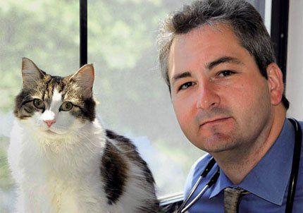 Oscar, el gato de la muerte