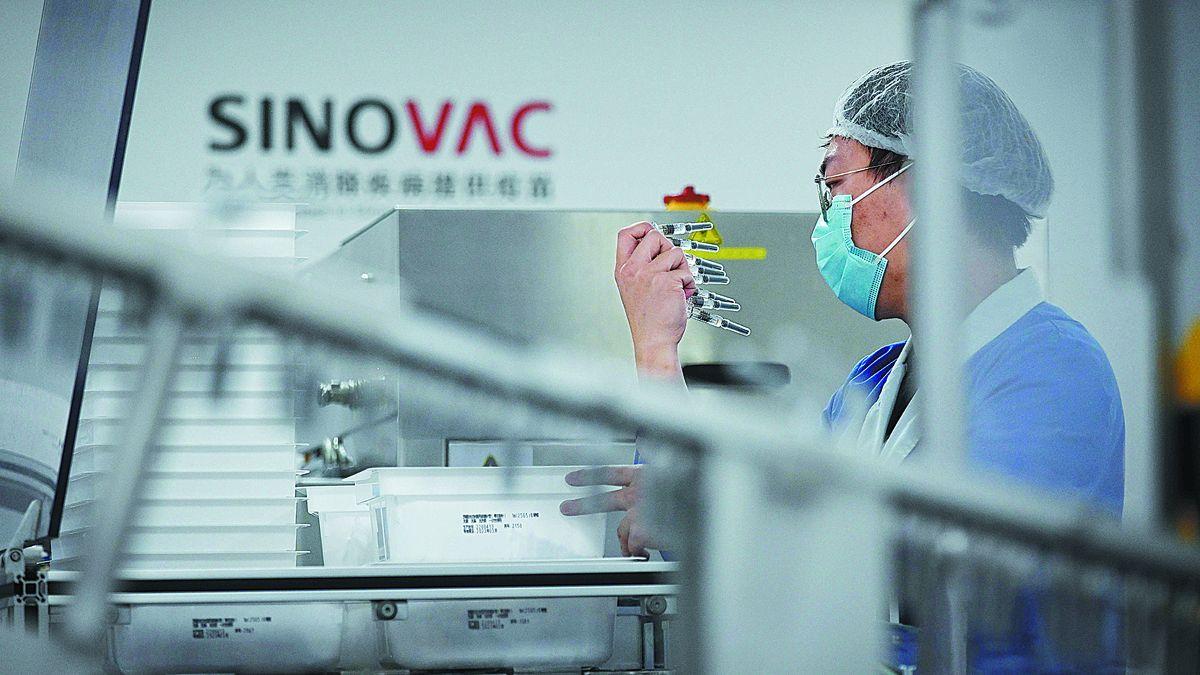 Un técnico controla las vacunas contra Covid-19 en una fábrica de Sinovac Biotech. La farmaceútica dio detalles de la vacuna CoronaVac.