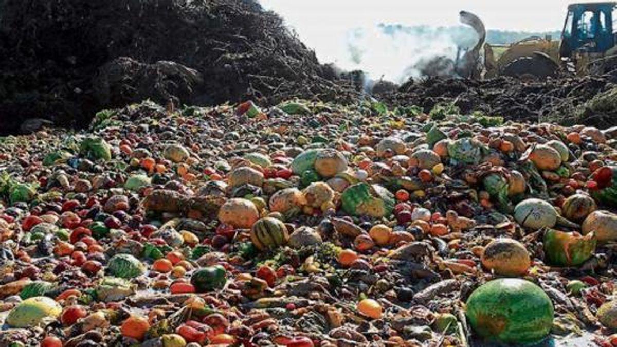 La ONU mostró como en un mundo con millones de personas con hambre se sigue desperdiciando los alimentos.