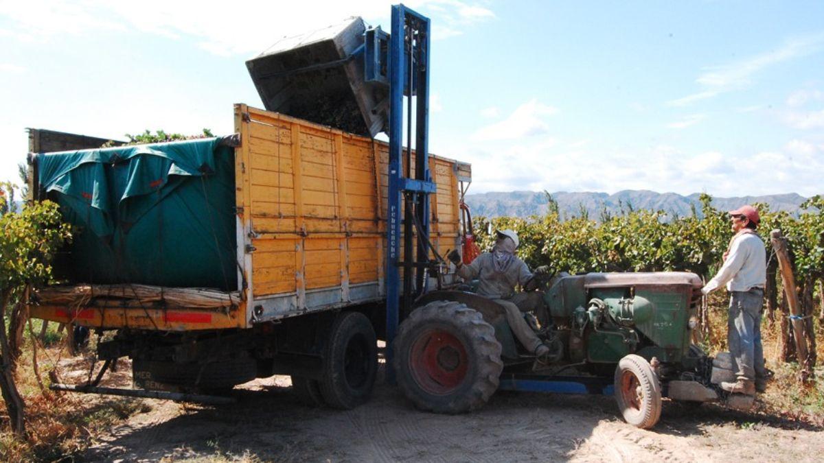 A los productores cooperativistas les preocupa la suba constante del precio del combustible -gasoil- que no se condice con los precios del vino
