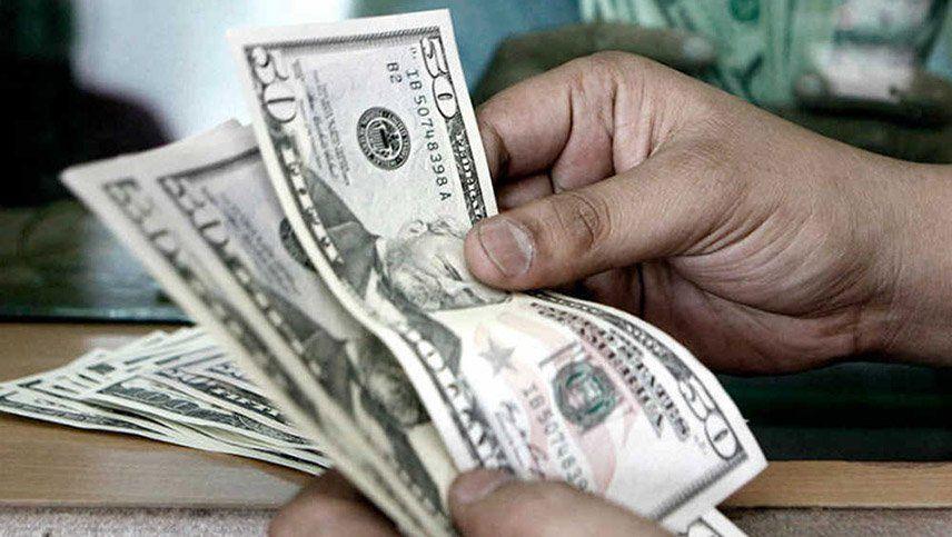 Cómo cerrará el dólar y la actividad económica del país en este 2020