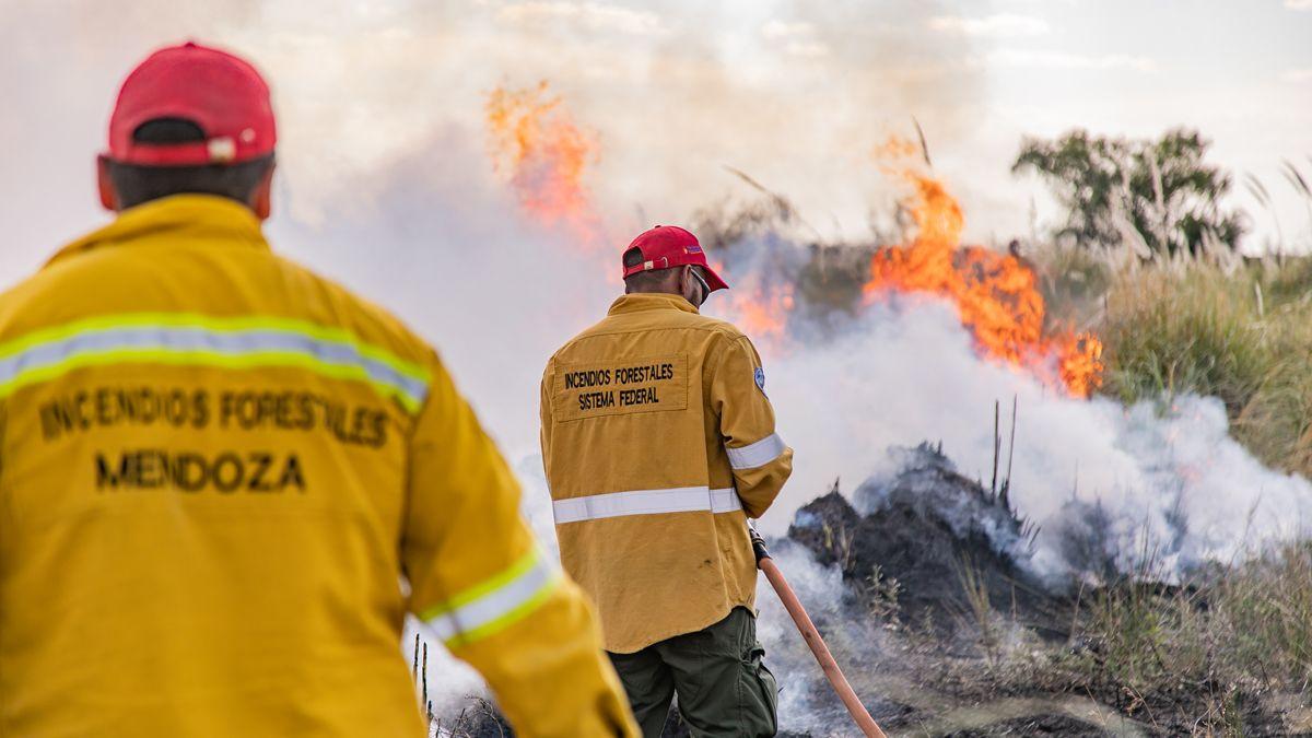 Aplican $1.200.000 en multas por incendios forestales intencionales