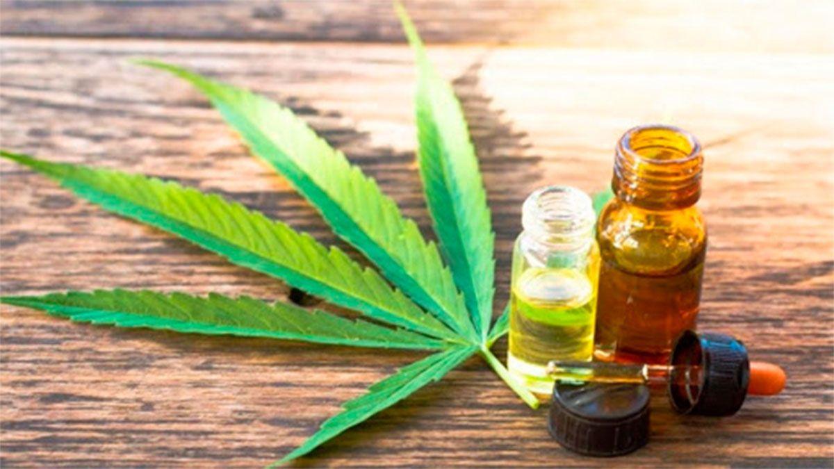 Se aprobaron este jueves excepciones para el ingreso al país de productos que contengan derivados de la planta de cannabis y sean destinados a uso medicinal.