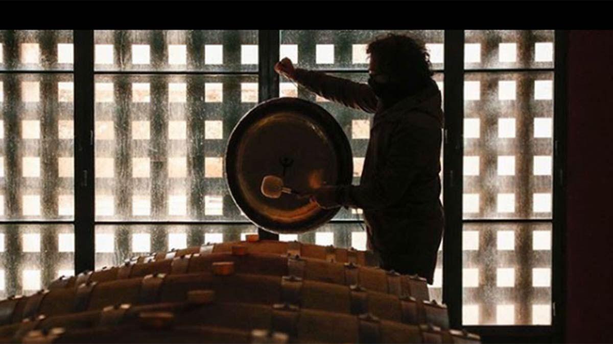 Armonización del vino en la cava. Foto: Gentileza Germán Lledó.