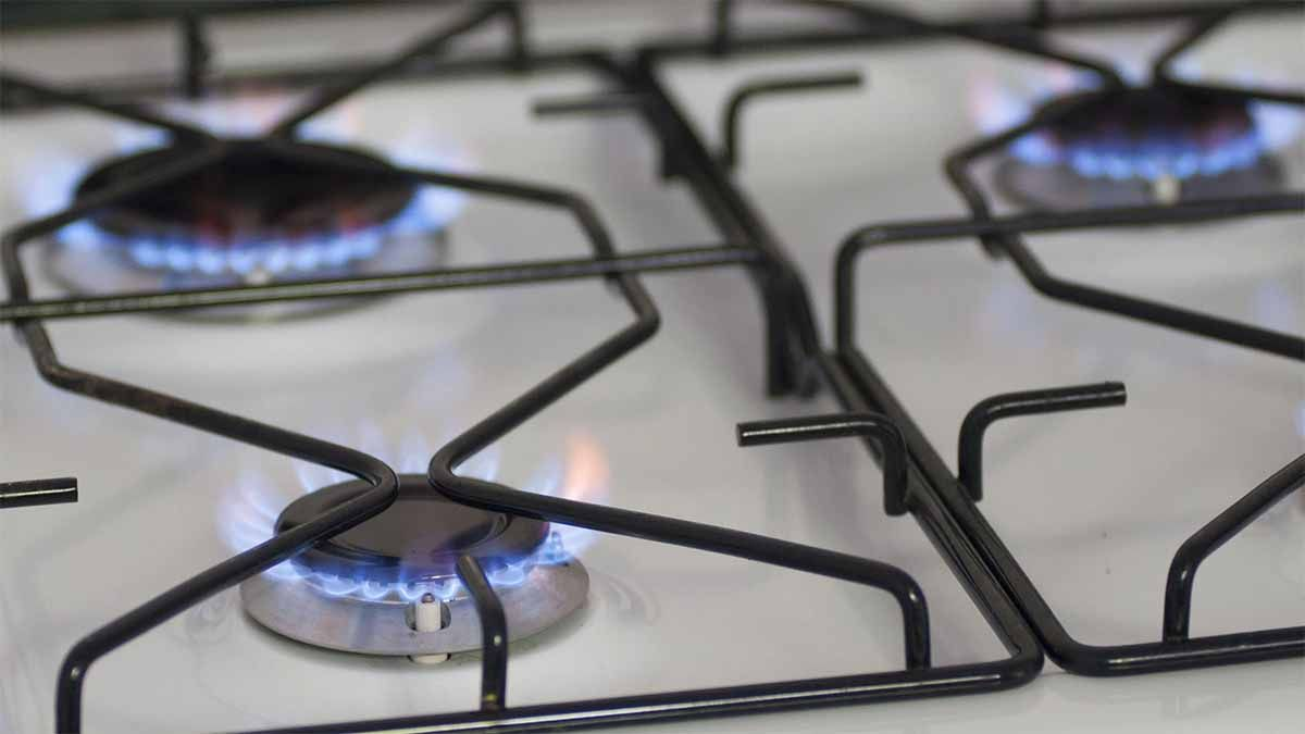 El Gobierno postergó los aumentos de gas y electricidad hasta marzo