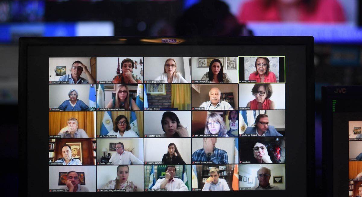 Aborto legal: nuevo conteo de votos esperanza a los Verdes