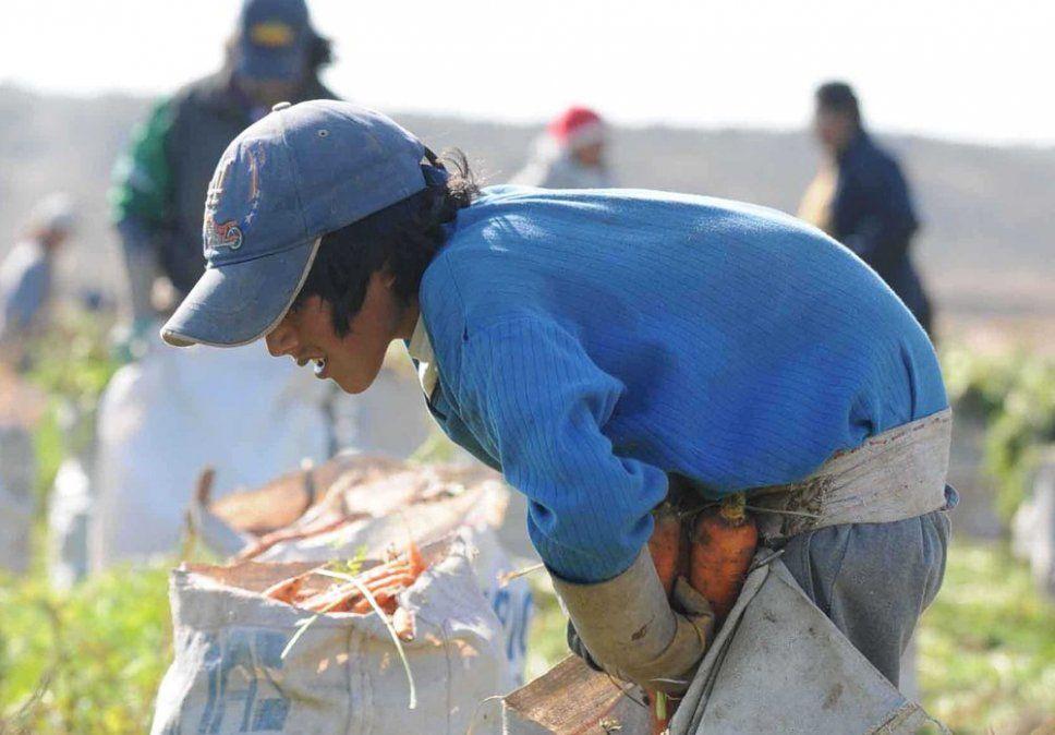 Trabajo y explotación infantil en la agricultura.