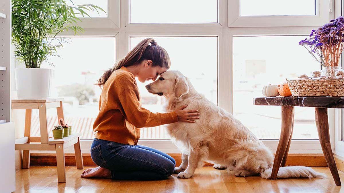 En el Top 5 de los signos del zodiaco que más aman a los animales están Tauro y Leo. ¿Cuáles son los demás?