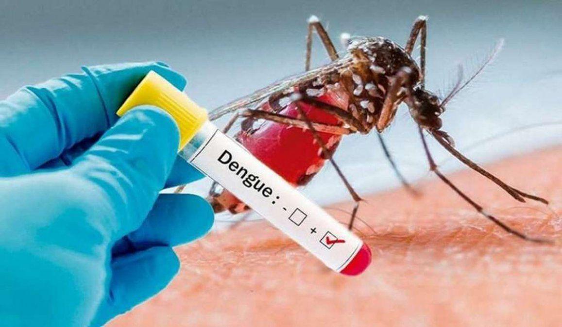Corona dengue y corona salmonella en Argentina