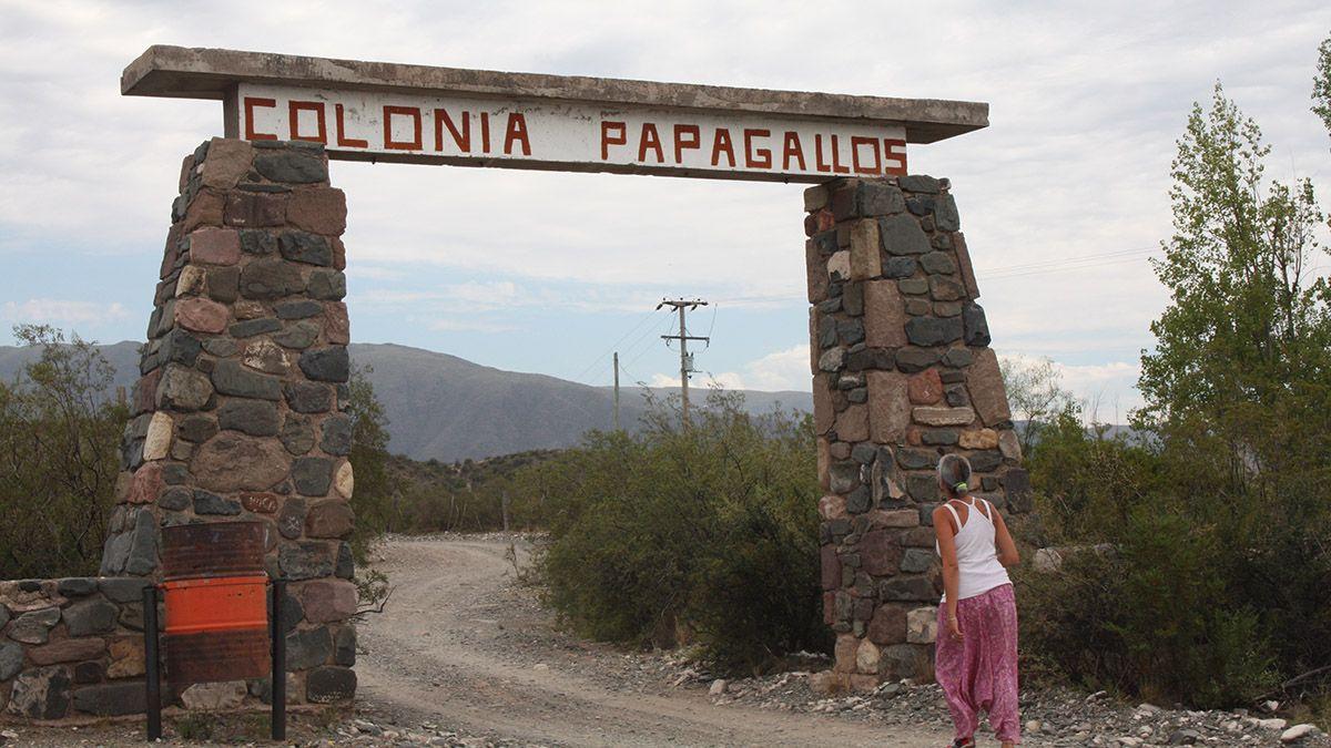 Colonia Papagallos