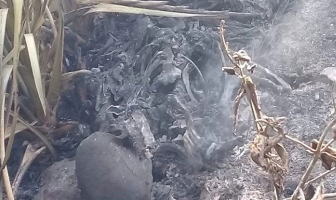 El cuerpo carbonizado fue encontrado a la vera del Río de La Plata en Quilmes e investigan si se trata de un abogado desaparecido en julio.