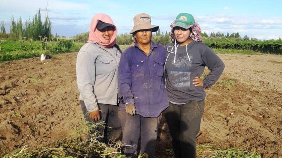 Érika Vega y sus compañeras de trabajo en la chacra.