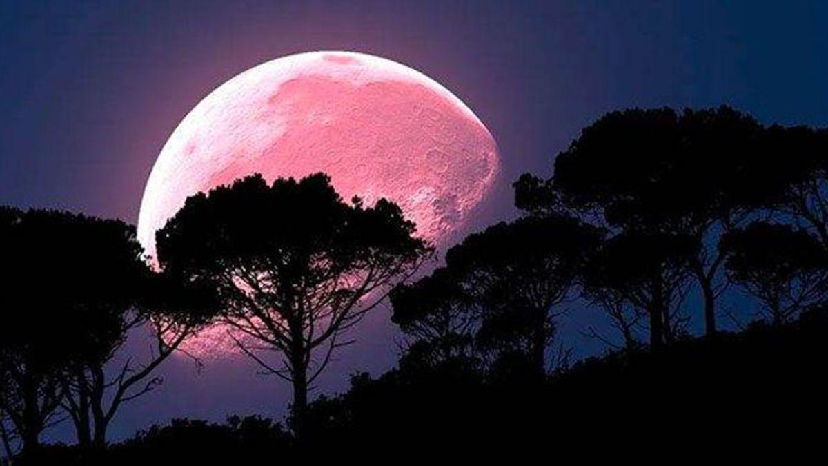 La luna rosa infuirá en todos los signos