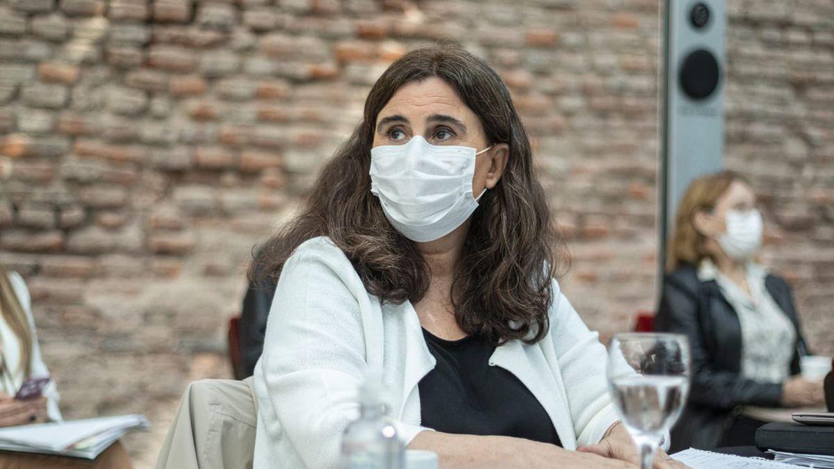 El ministerio de Salud de Mendoza confirmó la presencia de un caso de cepa británica en un paciente de Luján de Cuyo. Qué recomiendan. ¿Habrá restricciones?