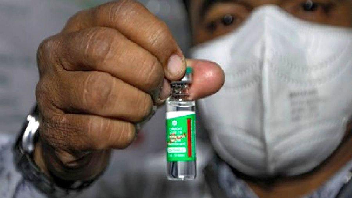 Estas vacunas forman parte de un total de 1.160.000 dosis que el Estado argentino adquirirá a través del Instituto Serum de India.