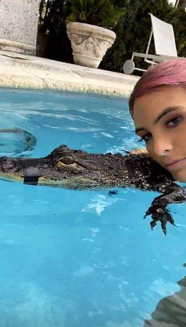 Lele Pons tiene de mascota un cocodrilo