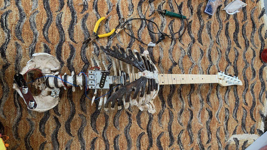 Viola heavy. Se hizo una guitarra con el esqueleto de su tío muerto.