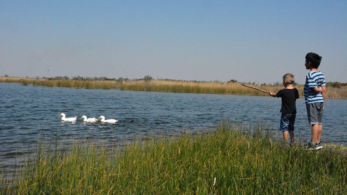 Lavalle avanza en la protección del Humedal Laguna de Soria.