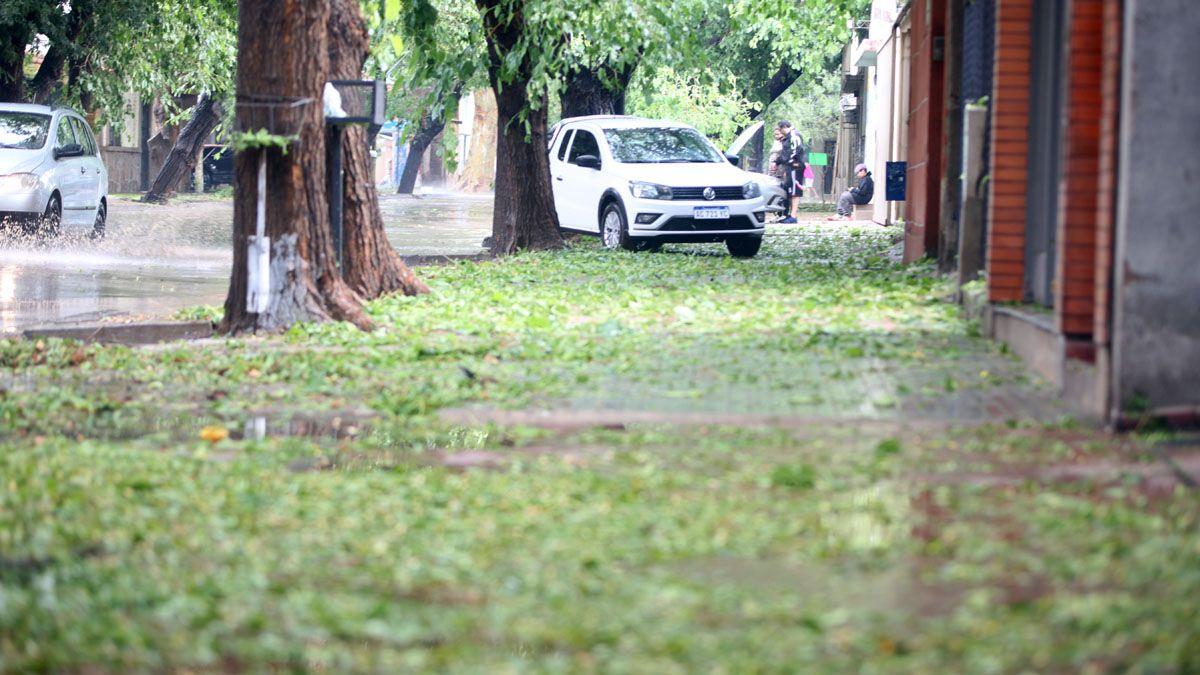 La tormento provocó importantes destrozos en diferentes departamentos del Gran Mendoza. Hay alerta sobre posibiles cortes de agua.