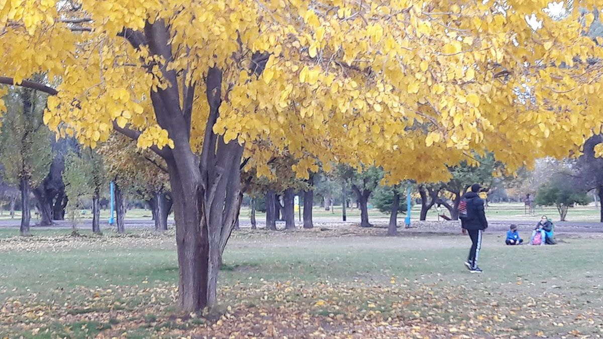 El pronóstico del tiempo anticipa para Mendoza un sábado y domingo muy fríos.