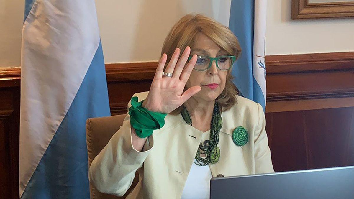 La senadora Norma Durango durante la sesión por la legalización del aborto.