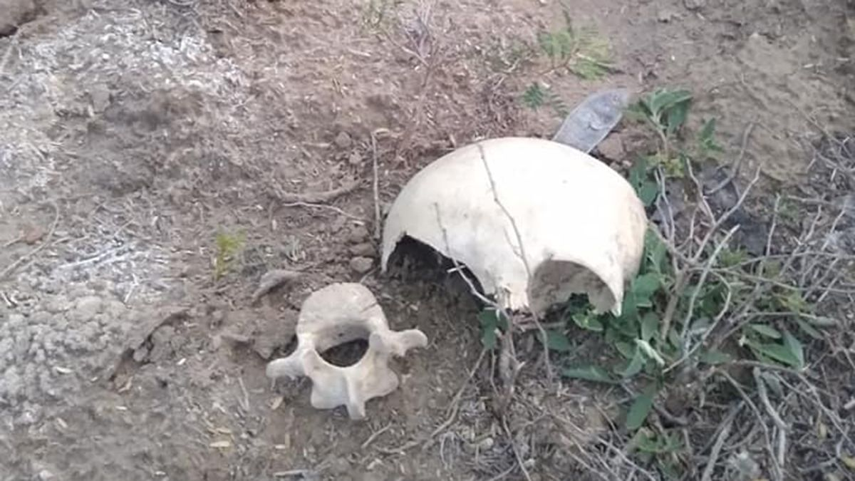 Excavan tumbas sobre tumbas en el cementerio más antiguo de San Martín