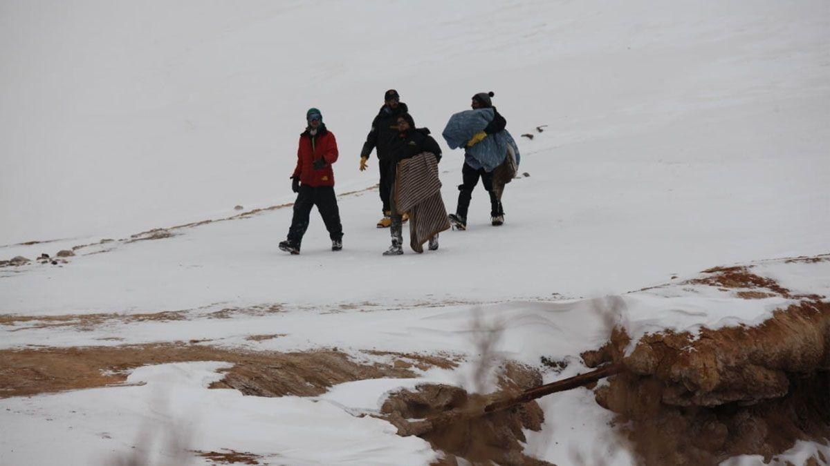Guardaparques rescataron al cóndor andino juvenil en Puente del Inca.