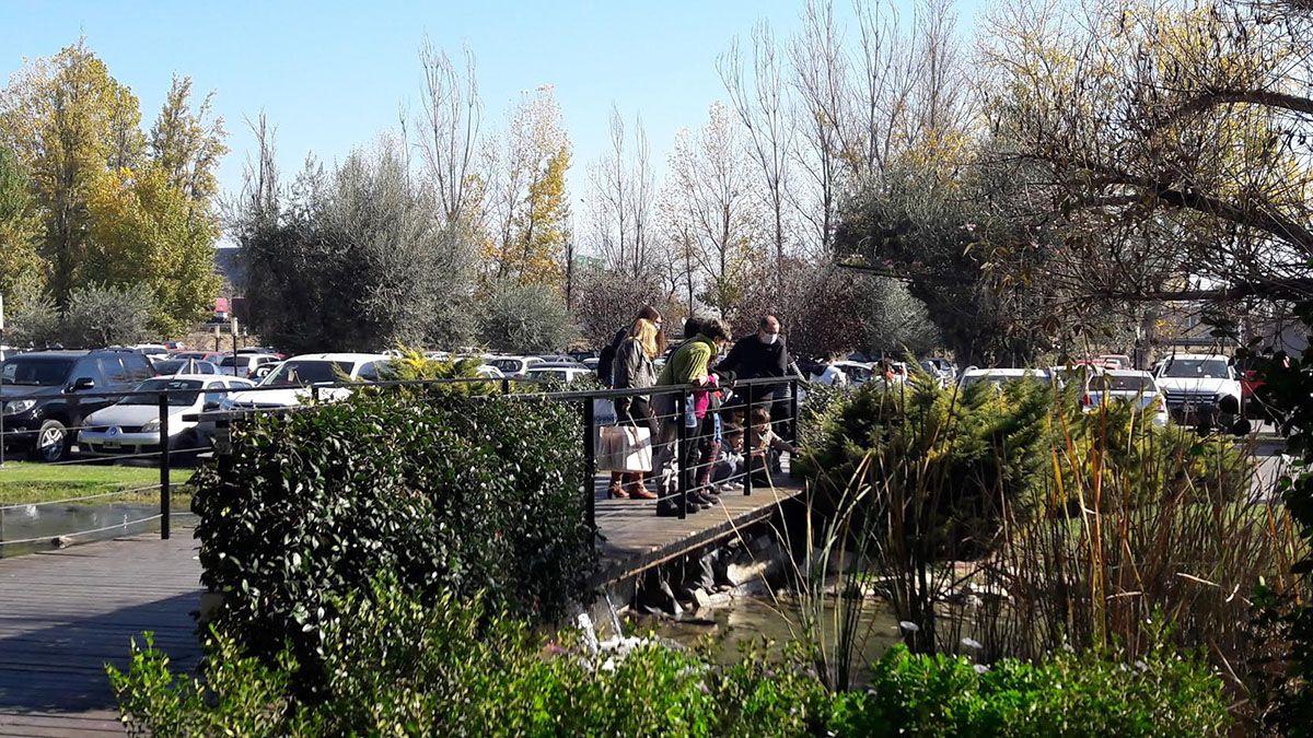 El pronóstico del tiempo en Mendoza anticipa días soleados.