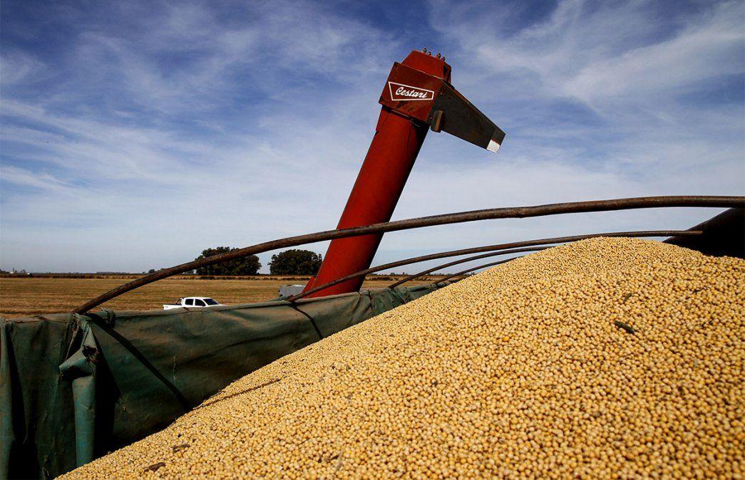 El precio internacional de la soja superaba los US$ 605 dólares en el mercado de Chicago