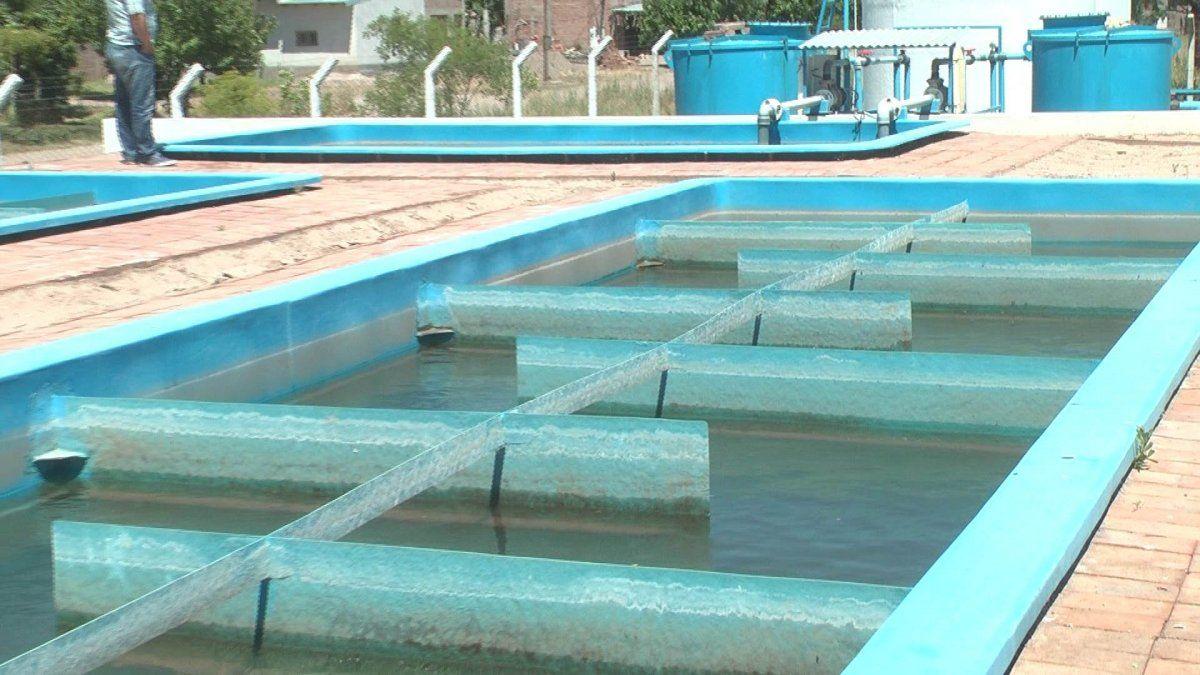 Informe sobre el agua domiciliaria de Villa Atuel