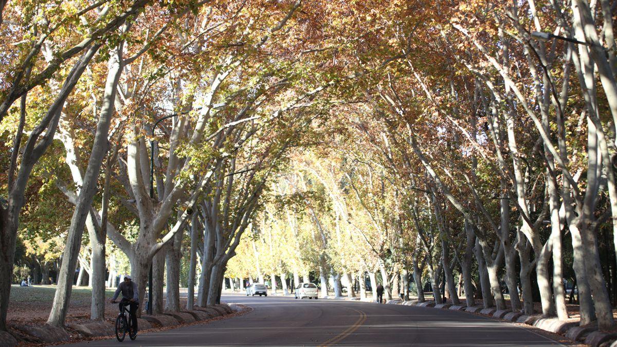 Llegadas las 18 horas el Parque General San Martin se vio vacío.