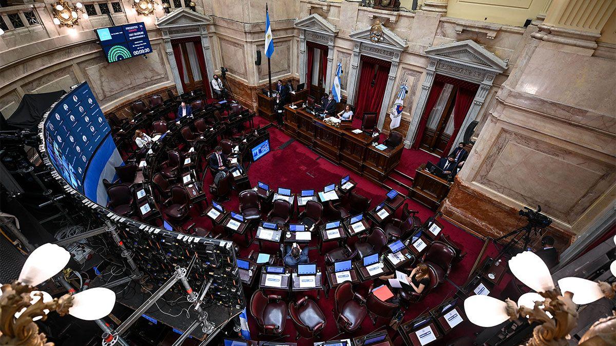 En comisiones el Senado comienza a debatir el aborto legal.
