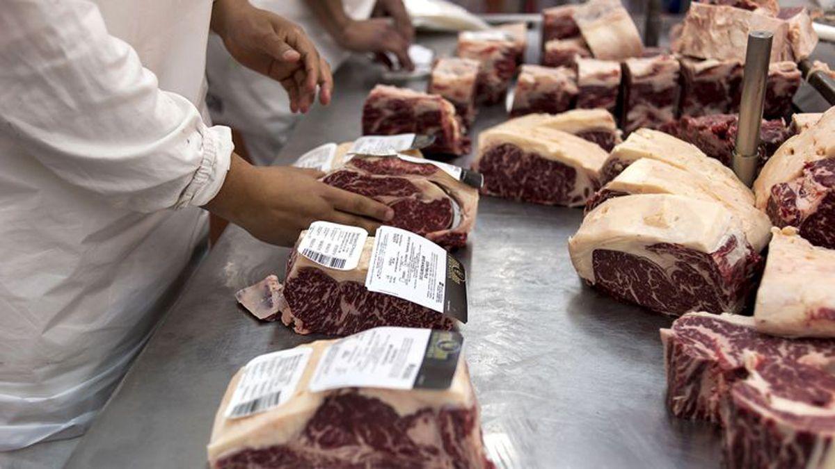La intención del Gobierno es instaurar un nuevo sistema para la exportación de carne que garantice abastecimiento y mejores precios en el mercado interno