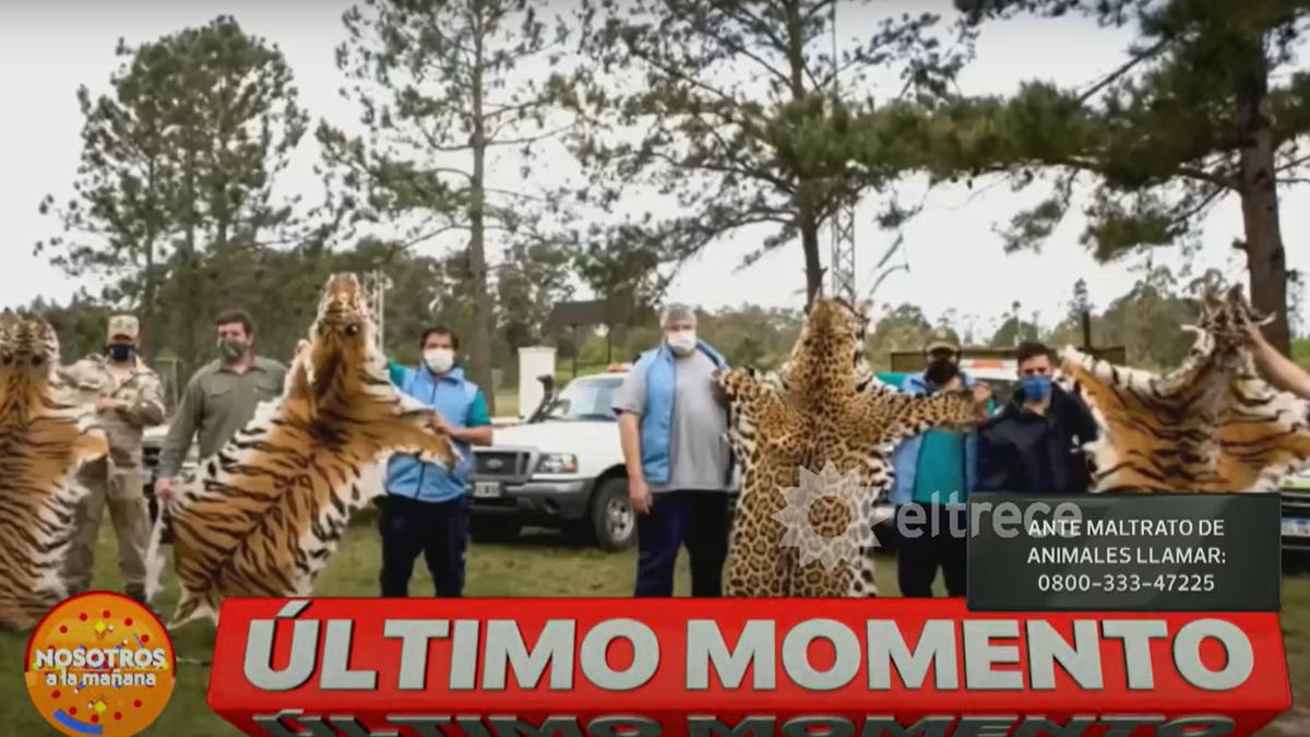 En un Zoo de Entre Ríos encontraron cueros de animales secándose.