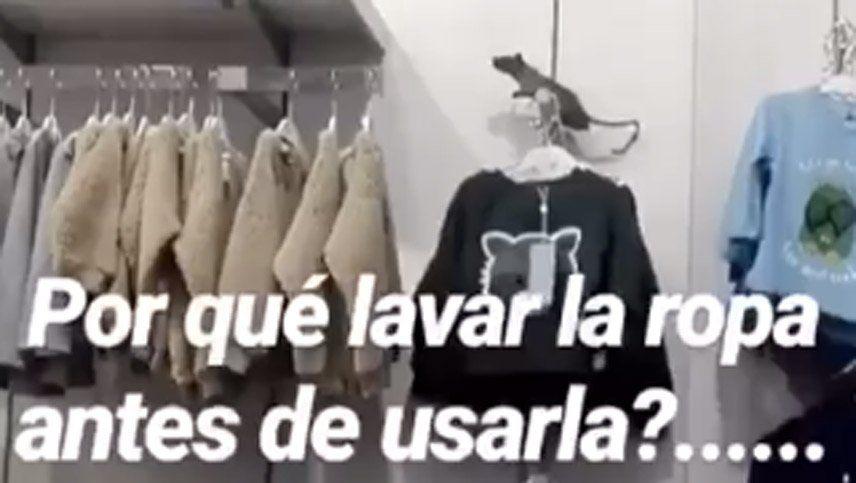 ¿Ratas entre la ropa de un Ripley de Chile? Los videos de Facebook que se hicieron virales
